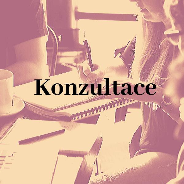 konzultace a konzultační služby Basel Bazilej